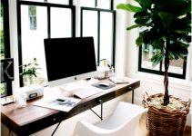 plantas de interior para decorar oficinas