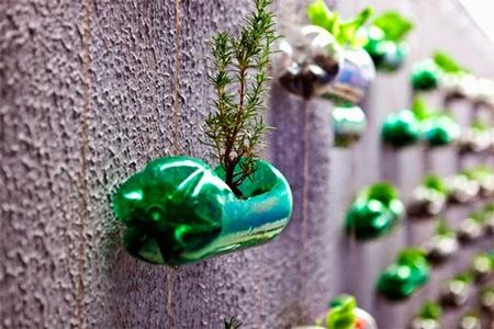 botellas pet, como reciclar plastico de botellas, envases de plástico pet,
