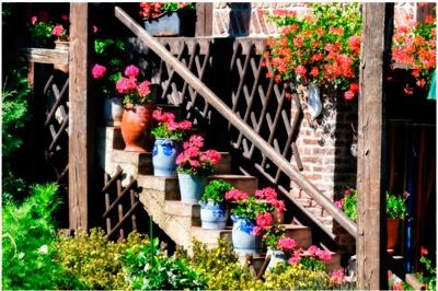 jardines diseños exteriores, diseño y decoracion de terrazas